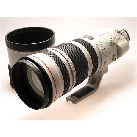 Canon 200-400mm F4 L IS USM with Internal 1.4x thumbnail