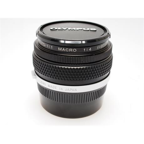 Olympus 80mm F4 Macro Zuiko + Ext Tube 14 thumbnail