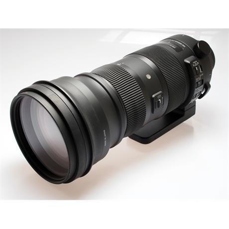 Sigma 150-600mm F5-6.3 DG OS HSM Sport - Nikon thumbnail