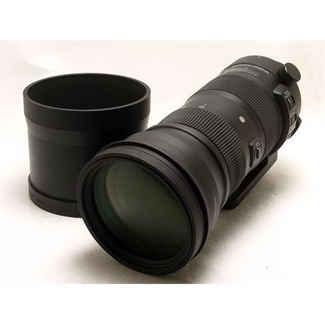 Sigma 150-600mm F5-6.3 DG OS HSM Sport - Nikon AF thumbnail