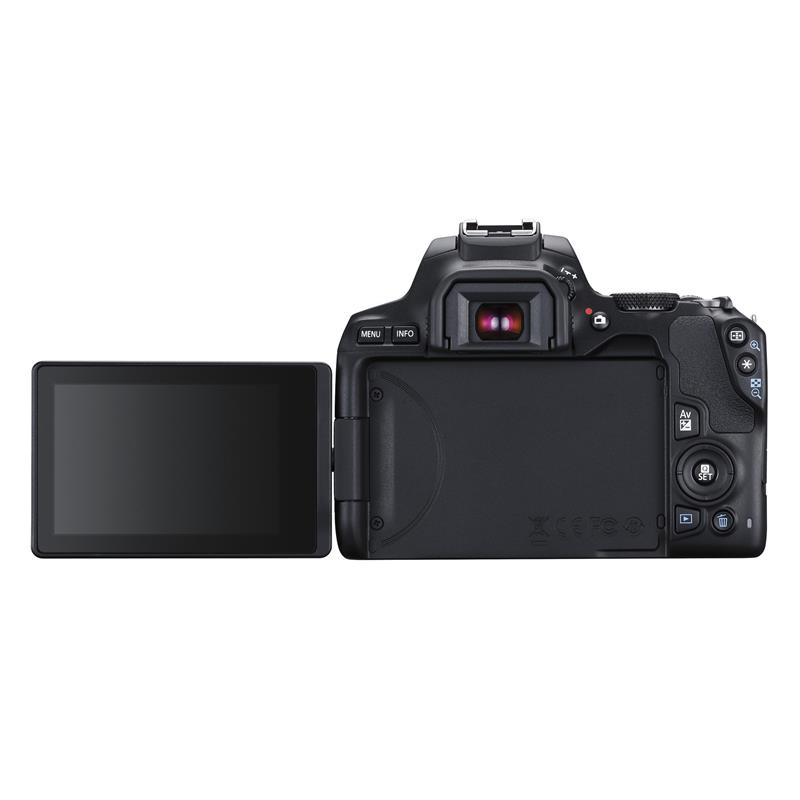Canon EOS 250D + 18-55mm F4-5.6 IS STM EF-S  Thumbnail Image 1